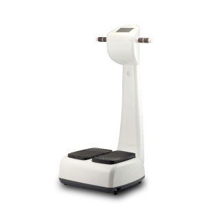 fj-099-Body-Slimmer-Vibration-Machine-01-300x300